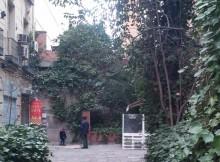 Donde Monica jardin